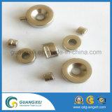 Imán diametricalmente magnetizado del neodimio del cilindro de la venta al por mayor