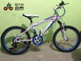"20 "" MTBの山の自転車、子供山の自転車"