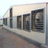Aves de corral Breeding estructurales de acero prefabricadas de la casa