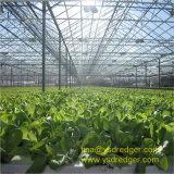 温度調整システムが付いている野菜温室