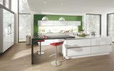 U datilografa o armário de cozinha da laca (ZS-805)
