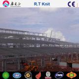 Costruzione d'acciaio, magazzino della struttura d'acciaio (SSW-599)