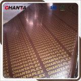 пленка Chantaplex тополя 18mm полная смотрела на переклейку для конструкции
