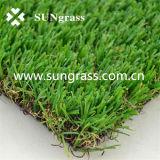 Het Gras van de simulatie voor Tuin of Landschap (sunq-AL00063)