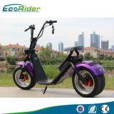 Le scooter électrique de Harley de la moto 1200W neuve avec retirent la batterie