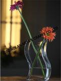 Nuevo florero del vidrio de la manera 2016