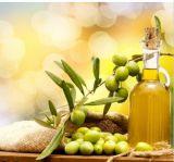 Aceite de oliva puro de la carrocería de la escritura de la etiqueta privada del OEM