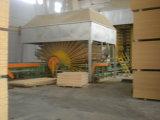 изготовление 1220X2440/1830X2440mm обыкновенное толком/сырцовое частицы доски от Китая