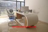 Beau Tableau de marbre de bureau de meubles de bureau