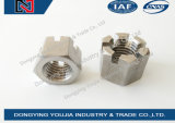 GB6178 en acier inoxydable à fente et noix de chêne