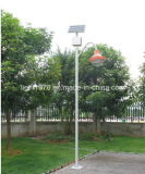 Selling 최신 9W LED Long Lifespan Solar 정원 Lights