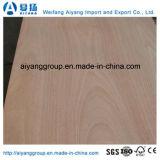 AA-Grad Bintangor/Okoume stellte Pappel-Kern-Handelsfurnierholz für Dekoration/Möbel gegenüber