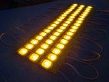 5054 DV12 module de l'injection DEL pour le signe d'éclairage