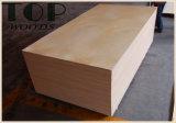 madeira compensada comercial do folheado do vidoeiro do núcleo do Poplar de 1220*2440 (4*8) 6/9/12/15/18mm com colagem de WBP