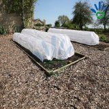 Tela não tecida não tecida UV da tela de Spunbond PP para a agricultura/a tela do Nonwoven do saco da proteção planta da fruta