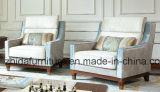 Conjunto del sofá de los muebles de la sala de estar