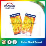 Cartão de cores para material de construção Pintura interior