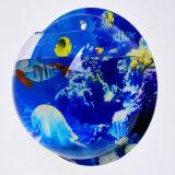 Cuvette acrylique fixée au mur de poissons de Creatve