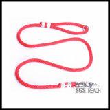 編まれたラベルが付いている有機性綿ロープのスリップのトレーニング犬の鉛