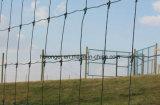フィールド鉄の塀または牧草地の金網またはヒツジの塀かシカの塀