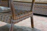 屋外のテラスの柳細工の庭の藤のソファーセット、ジャスティンの部門別セットの屋外の家具(J610)