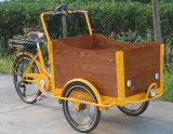 Bicicleta elétrica da carga do triciclo para animais de estimação dos miúdos para a venda