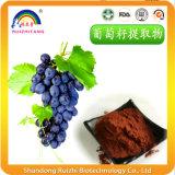 Estratto naturale puro del seme dell'uva