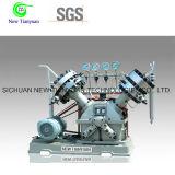 Zeldzaam Gas Twee de Compressor van het Diafragma van Hoofden/de Compressor van het Membraan