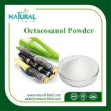 Порошок выдержки воска сахарного тростника поставкы фабрики, порошок Octacosanol выдержки воска сахарного тростника