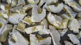 Máquina do Lyophilization do Durian/de Lyophilizer/fruta do Durian secador de gelo do vácuo