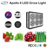 180W Apollo 6 LED Grow Light pour la plantation de serre