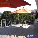 Decking en plastique imperméable à l'eau extérieur de vente chaud de terrasse de WPC