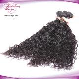 Индийское естественное выдвижение человеческих волос Remy волос девственницы волны
