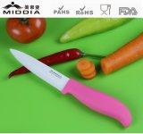 包丁、陶磁器のステーキ用ナイフ、台所ツール