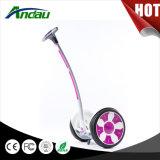 Individu d'Andau M6 équilibrant le producteur électrique de scooter