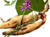 Isoflavones do extrato da raiz de Kudzu, Puerarin, 40%-80% Uv-Vis, HPLC