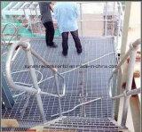 Bevloering van de Loopbrug van de fabriek de Hete Ondergedompelde Gegalvaniseerde en Grating van het Staal van het Platform