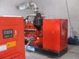 Gruppo elettrogeno del biogas/unità di CHP del biogas Genset/biogas di Cummins