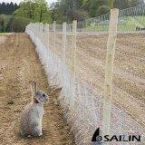 Sailin sechseckige galvanisierte Draht-Filetarbeit für Huhn-Bauernhof
