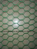 PVC Coated Hexagonal Wire Mesh para frango Coop Wire Mesh