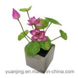 Fiore della seta del fiore artificiale di due colori