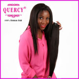 毛の工場品質は100%の人間のバージンのRemyのペルーの人間の毛髪を保証した