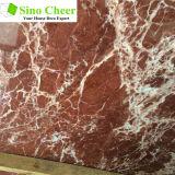 磨かれた赤いタイル張りの床および大理石の平板