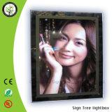 La publicité du cadre léger mince acrylique du cristal DEL de RoHS de la CE