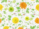 Los nuevos diseños de las clases imprimieron el mantel claro transparente del mantel popular para el hogar/el partido