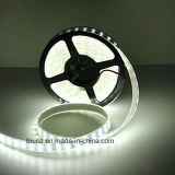 12V Doble Fila 600leds SMD 5050 LED Luz de tira flexible