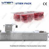 Trockene Frucht Thermoforming Vakuumkarten-Verpacken-Maschinerie mit CER Bescheinigung