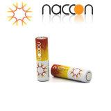 Trockene Zellen-Batterie