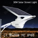 2016 luz de calle solar de la nueva del Patten 30W luz solar innovadora del cisne