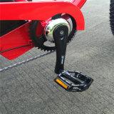 """脂肪質のタイヤ26 """"販売(RSEB-506)のための*4.0が付いているEn15194電気自転車"""